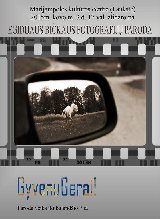 Parodos plakatui Egidijaus I-2